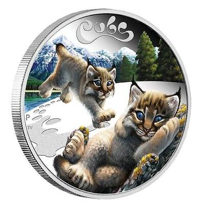 2019 New Style 2016 Lynx Cubs Tuvalu 1/2 Oz Silver Proof 50c Half Dollar Coin Colorized Good For Energy And The Spleen Coins: World