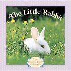 The Little Rabbit by Judy Dunn (Board book, 2014)