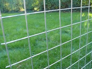 3 x Galvanised Welded Wire Mesh Panels 2440(8')x1220(4') 50x50x2.5mm
