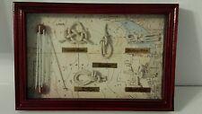 5 various Sailors Knots Shadow Box Wall Decor Nautical Sailing Wood Frame Map