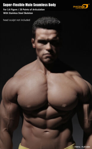 1//6 Phicen PL2016-M34 Flexible Seamless Male Super Muscular Body Steel Skeleton
