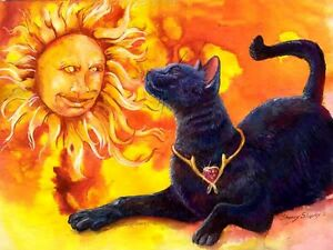 SUN-WORSHIPER-11x14-Original-9x12-w-mat-CAT-amp-SUN-Art-Painting-Sherry-Shipley