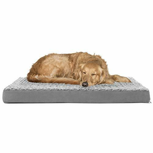 Sealy Ultra Plush Dog Bed Orthopedic Foam pet Bed with Machine Washable Plush Cover