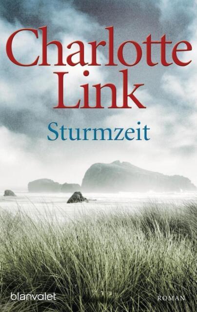 Sturmzeit von Charlotte Link (2010, Klappenbroschur)