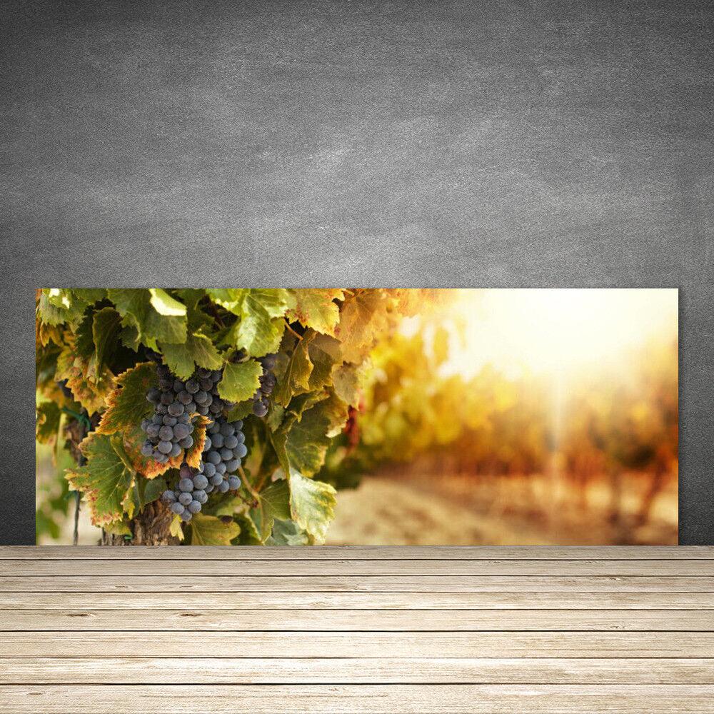 Crédence de cuisine en verre Panneau 125x50 Nature Raisin