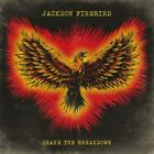 Shake The Breakdown (Black Vinyl) von Jackson Firebird (2015)