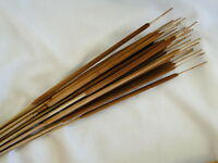 Natural Dried Dyed Brown Cattail Autumn Fall Foliage Stem Flower Filler