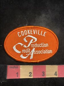 Orange-Version-Farmer-PCA-PRODUCTION-CREDIT-ASSOCIATION-Advertising-Patch-94X2