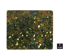 "Pallasite ""JEPARA"" - Slice - 52,33 g - 77 x 92 mm"