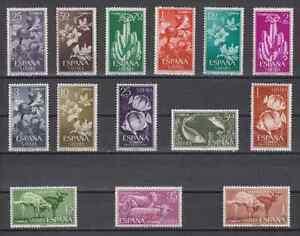 Sahara-Spain-Year-1962-New-Complete-MNH-Spain-Edifil-201-14