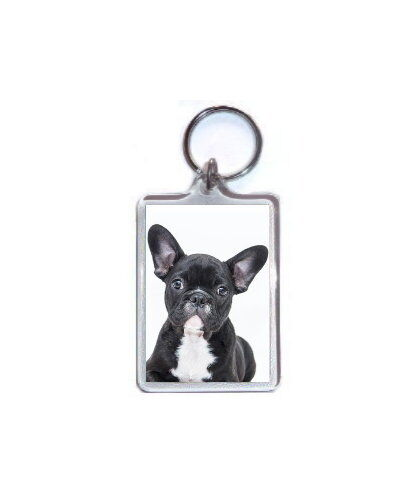 FRENCH BULLDOG PUPPY DOG KEYRING BAG TAG ANIMAL PET LOVER PHOTO GIFT
