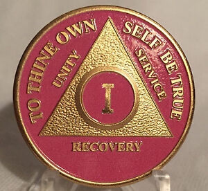 Pink-amp-Gold-Plated-One-Year-AA-Chip-Alcoholics-Anonymous-Medallion-Coin-1
