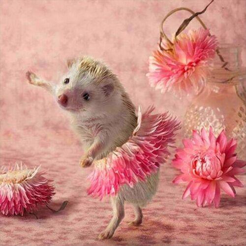 5D Diy Diamant Malerei Bohren Voll Runde Tiere Cute Hedgehog Flower Dance W X6Y9