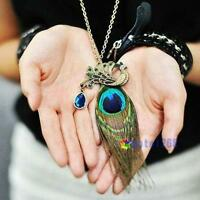 Nice Gorgeous Blue Eyes Peacock Long Feather Necklace K-