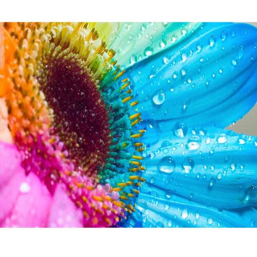 Flower Full Drill 5D Diamond Painting DIY Cross Stitch Kits Home Decor Vase Art