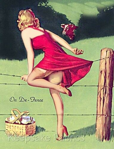 Pin Up Girl Jumps Fence Fabric Applique Multi Sizes