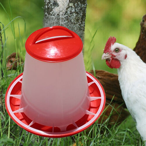1.5kg Red Plastic Feeder Baby Chicken Chicks Hen Poultry Feeder Lid/&HandleSNpop