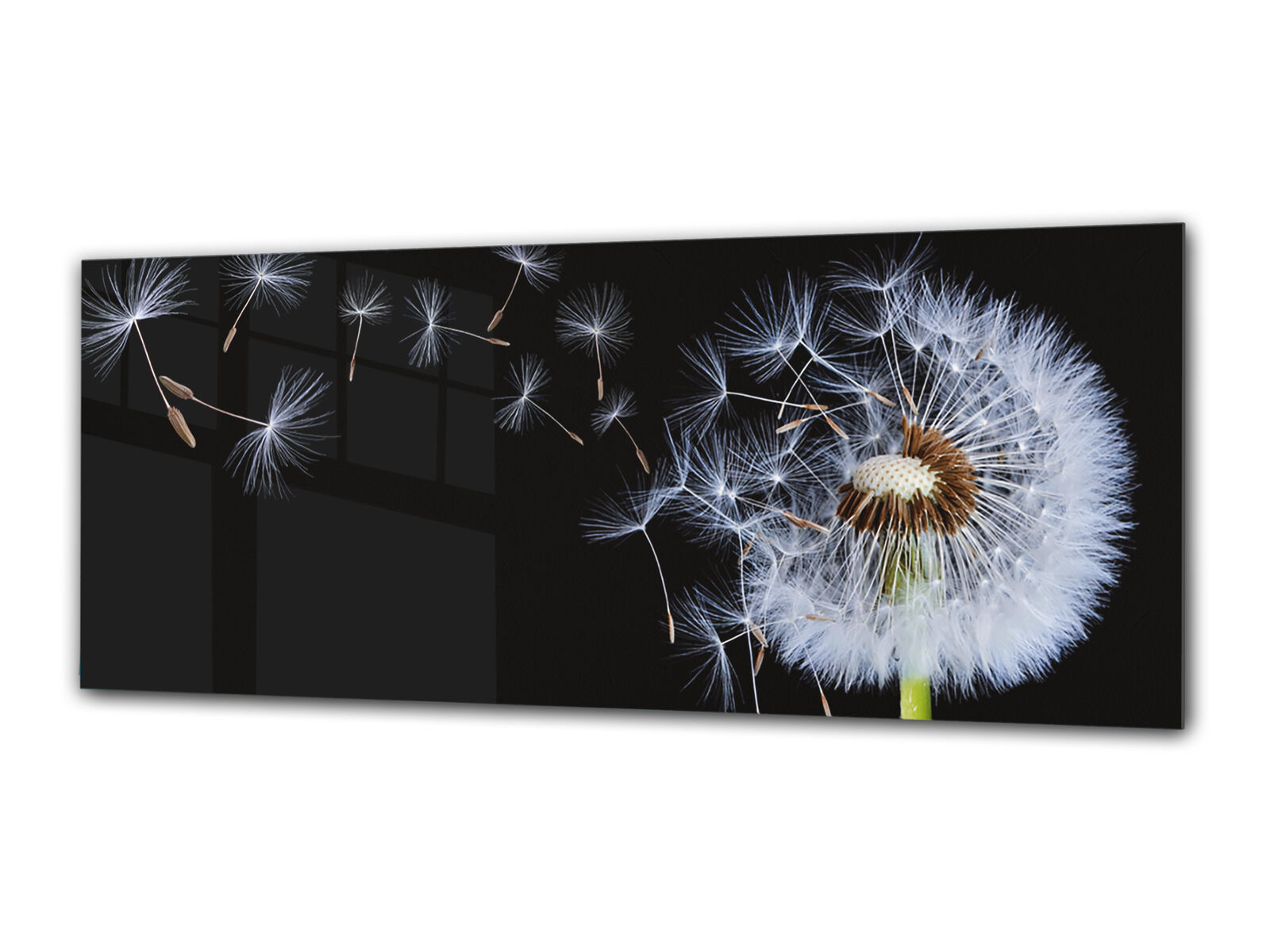 Glass Print Wall Art 112x45 cm Image on Glass Decorative Wall Picture 110444723