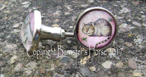 ALICE IN WONDERLAND CUPBOARD DOOR DRAWER KNOBS HANDLES PULLS SILVER METAL//GLASS