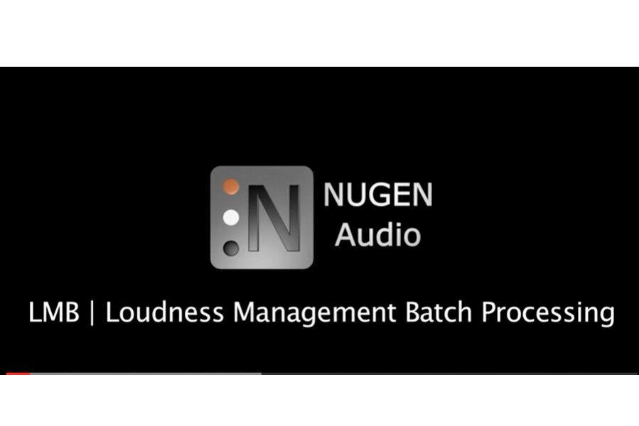NUGEN Audio AMB DynApt Module