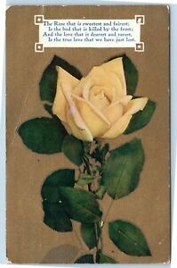 The-Rose-that-is-sweetest-and-fairest-yellow-rose-postcard