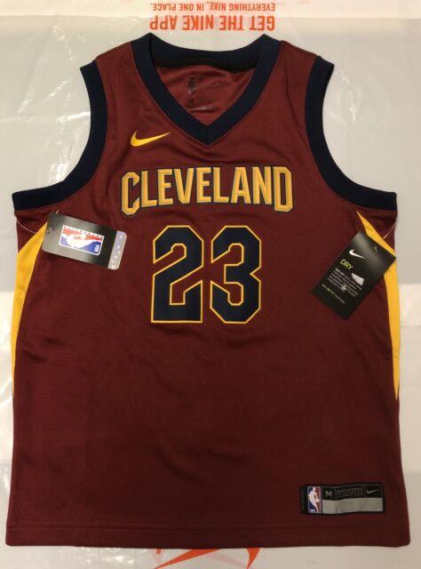 cumpleaños etiqueta acampar  Nike NBA Cleveland Cavaliers Lebron James Swingman Jersey With Tags 10-12  Yrs for sale online | eBay