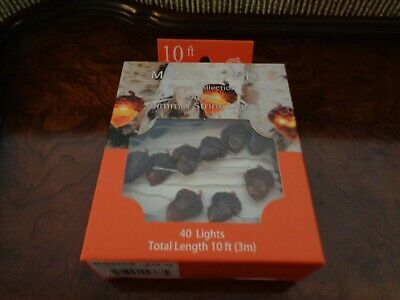 Manor Lane 10 Ft Shimmer String Fall Acorn Flexible Led