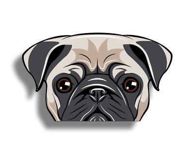 Pug Sticker Beach Ocean Dog K9 Laptop Cup Cooler Car Vehicle Window Bumper Decal