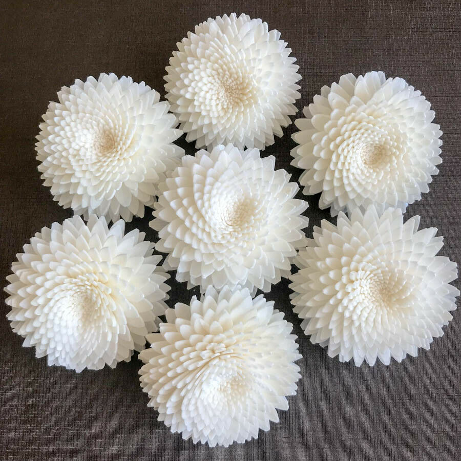 Sola Flowers Wood Aroma Diffuser Spa DIY Craft Bride Bouquet White Gerbera 5 cm