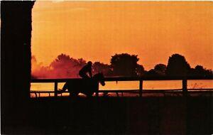 Vintage Postcard - Saratoga Race Track Racer Horse Silhouette NEW YORK NY #3861