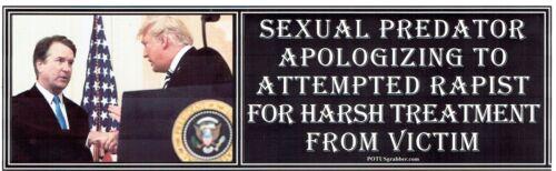 anti TRUMP APOLOGIZING TO KAVANAUGH humorous political sticker