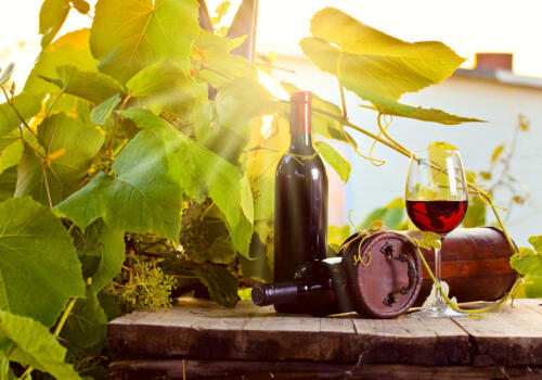 Fototapete Weinberg und Wein  Tapete Vliestapete