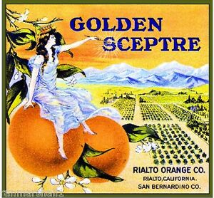 Rialto Minnehaha Indians Orange Citrus Fruit Crate Label Art Print