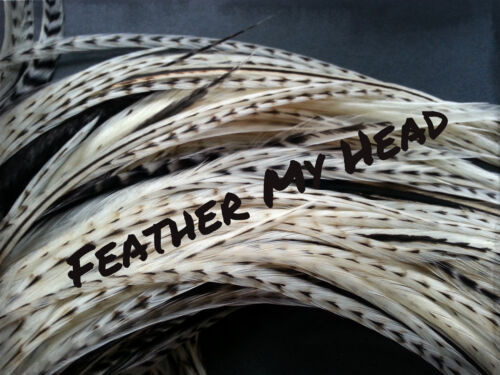 Pick Your Legth Up To 16 In Long Feathers For Hair Crafts Jewelry