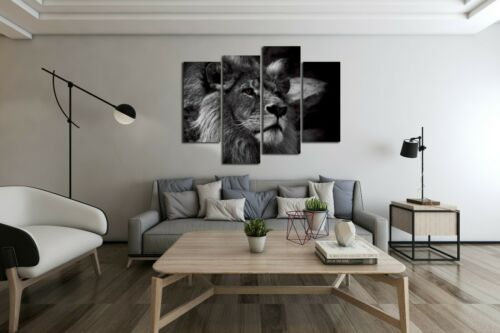 Framed Black And White Gray Lion Portrait Canvas Print Wall Art Painting Picture