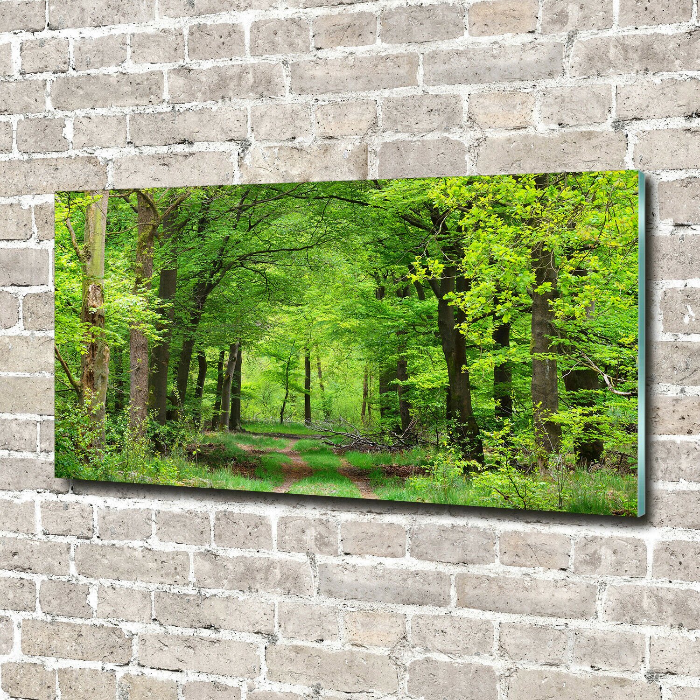 Acrylglas-Bild Wandbilder Druck 140x70 Deko Landschaften Frühlingswald