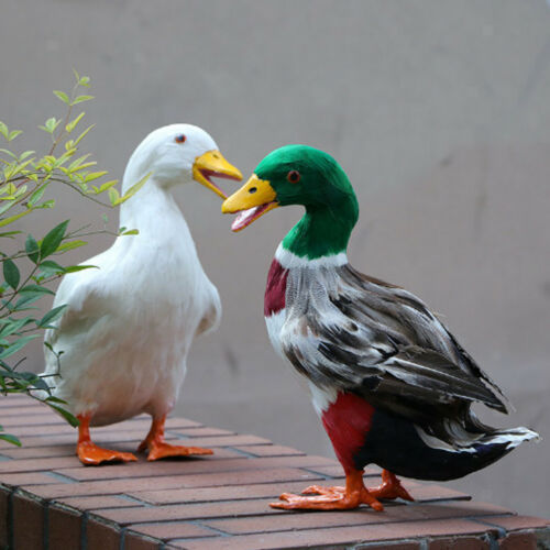 Vivid Feathered White Duck Fur Imitation Animal Home Patio Garden Decoration