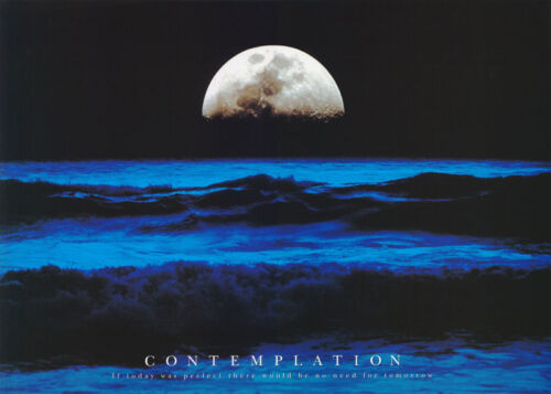 #PP0207   RW19 W FREE SHIPPING POSTER : PHOTO:   CONTEMPLATION IF TODAY