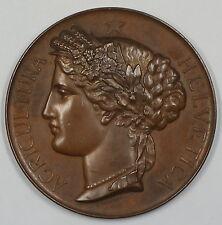 1887 Neuchatel Switzerland Swiss Bronze Agricultural Medal with Box JA