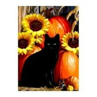 Fall Visitor Black Cat Pumpkins And Sunflowers Autumn Large House Flag 29 X 43