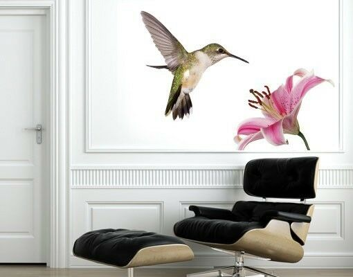 Hummingbird - Wall Decal Stickers