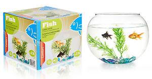 Fish & Aquariums Romantic Goldfish Bowl Kit 2.8ltr Round Glass Bowl Aquarium 2.8l Small Fish Water Tank To Win Warm Praise From Customers Aquariums & Tanks