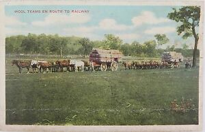EARLY-1900-S-GD-amp-DL-SERIES-POSTCARD-WOOL-HORSE-TEAMS-ENROUTE-TO-RAILWAY