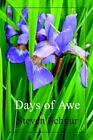 Days of Awe by Steven Schnur 9780595332489 Paperback 2004