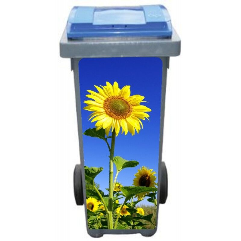 Adesivi cassonetto decocrazione Girasole 3242 Art déco adesivi