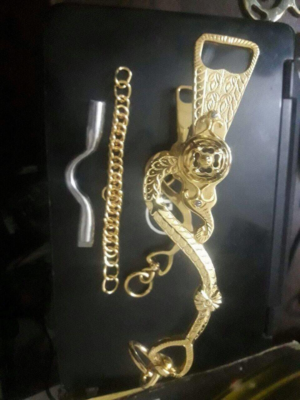 Caballo de cadena dorada vástagos Hackamore Bit Faizy