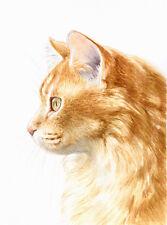 """8 x 6"""" Custom Acquerello Ritratto animale domestico-qualsiasi Pet dipinto dalla tua foto"""
