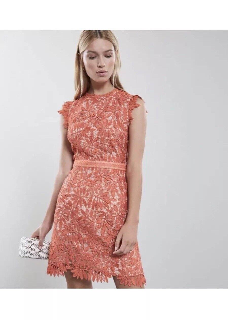 BNWT  Reiss Maika Corallo Arancione e colore carne pizzo Abito