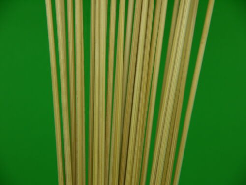 CANE POLE FLOAT TIPS STEMS 200mm LENGTHS