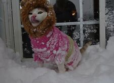 Scoot & Newts Presents   Onk the Snow Lion from the Blizzard of '16